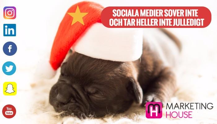sociala medier tar inte semester_jul-2.jpg